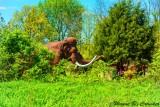 Dinosaur World 64.jpg
