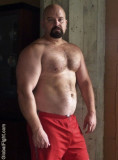 bald beefy daddy bear pictures.jpg