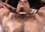 hairy chest marine.jpg