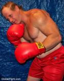 older redhead irish boxer.jpg