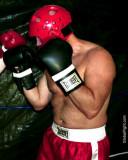 tuff daddie boxer.jpg