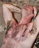 000very wet armpits matted chesthair.jpg