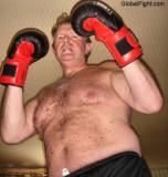boxing bears.JPG