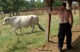 farmers son taking break.jpg