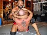 black bear wrestling domination.jpg