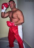 new york kock boxer profile.jpg