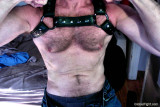 leather straps hairy cub.jpg