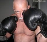 hairy daddy boxer.jpg