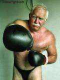silverdaddy boxing hot bear.jpg