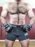 very hairy muscular mma guy.jpg