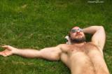 gay beach musclebears.jpg