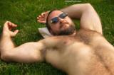 gay bearded mens gallery.jpg