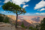 Las Vegas, Zion NP, Horseshoe Bend and Grand Canyon North & South Rims - September 2016