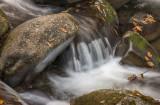 East Tennessee Stream