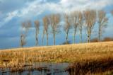 Hindsholm landscapes - Funen Island Denmark
