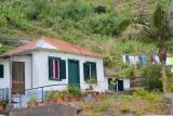 Madeira impressions