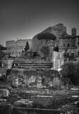 View toward the Basilica Maxentius & the Amphitheatrum Flavium