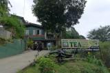 Celon Tea Factory
