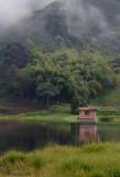 The birding pond Manizales