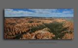 BJR3941 Bryce Panorama.jpg