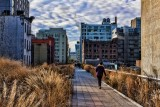 Hiking the High Line-NYC