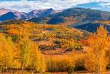2016_fall_colors
