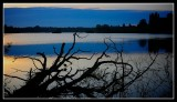 First light at Linlithgow Loch.