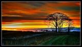 Fife Sunset