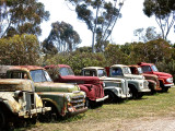 A line up of old relics, Tailem Bend, South Australia