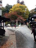 takao IMG_0286.jpg