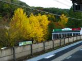 train station P1010105.jpg