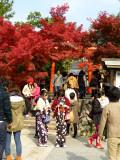 arashiyama P1010304.jpg