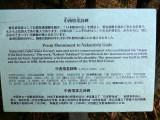 yacho tori P1010627.jpg