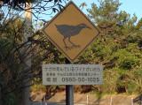 Okinawa Rail sign 2.jpg