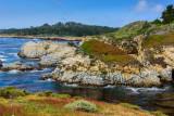 Point Lobos State Natural Reserve, Carmel