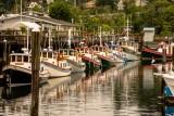 Harbor Days,  Olympia, WA. 2014