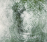 motion and abstracts-5.jpg