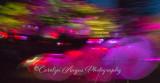 Sakura Illumination Vancouver-2.jpg