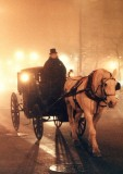 carriage driver-Chicago