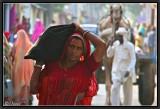 Street Life - Mandawa.