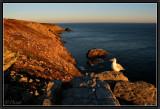 Pointe du Raz. Sunset Light.