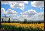 Springtime in North Cornouaille.
