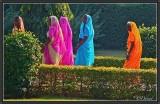 Saris. In the Gardens of Khajuraho.