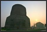 Strange Dhamekh Stupa at sunset. Sarnath.