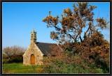 The Golden Brooms. Chapel Ar Zonj.