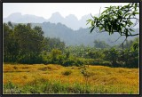 On the Road to Luang Prabang (2).
