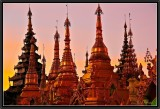 The Gold of Burma.
