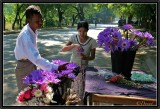 The Florists. Mandalay.