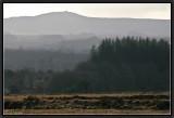 Montagne Saint Michel de Brasparts.