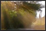 On The Dusty Roads of Burma.
